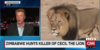 Zimbabwe Hunts Killer Of Cecil The Lion