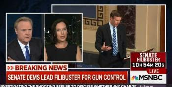 GOP Flack Does Her Best To Divert Debate On Gun Control Into One On Abortion
