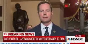 Republican Rodney Davis Lies About AHCA Vote For Trump