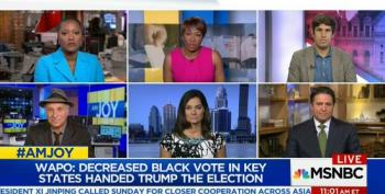 AM Joy Panel Looks At Voter Suppression Impact On 2016 Election And Potential In 2018