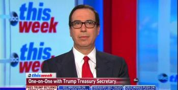 Steve Mnuchin, Secretary Of Lapdogs, Not American Interests
