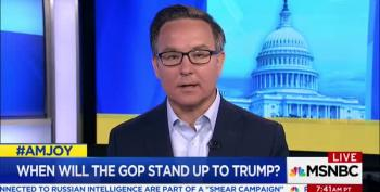Simon Rosenberg: 'The Entire Republican Party Is Complicit'
