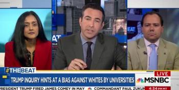 Ari Melber Stops Cato Institute From Spouting Off 'Radical Left' Civil Rights Nonsense