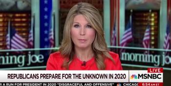 Nicole Wallace On 2020: 'No One Is Sure Trump Is Going To Make It'