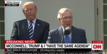 Trump Cussed Out McConnell Over Kavanaugh Because 'Leadership'
