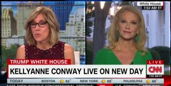 Cambridge Analytica And Wikileaks? Kellyanne Conway: Who, Me?