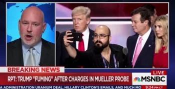 MSNBC Panelist: 'Nixon Never Sent Ziegler To Say It's McGovern's Fault Watergate Happened'