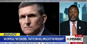 AM Joy: What Are The Odds That Flynn Is 'Singing Like A Canary'?