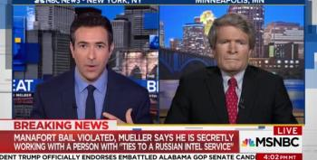 Richard Painter Slams Manafort: 'He Should Go Back To The Slammer'
