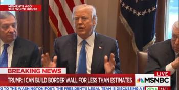 Trump Links Border Wall With DACA But Then Changes His Mind