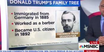 Ali Velshi Shows Trump's Family History Ties To 'Chain Migration'