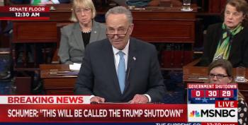 Sen. Schumer Dubs Government Funding Fail: 'Trump Shutdown'