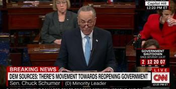 Chuck Schumer: 'The Government Will Reopen'