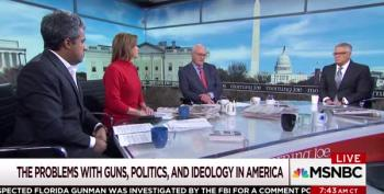 Mike Barnicle's 'Great' Idea For Gun Sense Elections