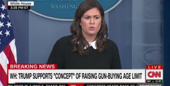 Huckabee Sanders Spins Trump's Heroism Fantasy Into 'Leadership And Courageous Action'