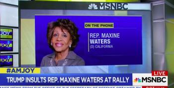 Rep Maxine Waters: If Mueller Doesn't Get Trump, Stormy Will