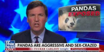 Tucker Carlson Takes Time For Segment About Sex-Crazed Giant Pandas
