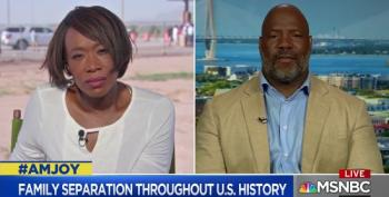 Joy Reid And Jelani Cobb Discuss The Fact That Separating Families Is Not 'Un-American'