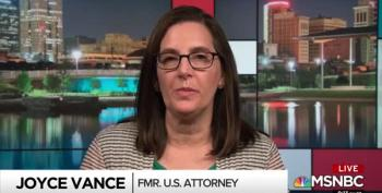 'You Don't Use A Big Fish To Catch A Little Fish': Joyce Vance Explains
