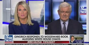 Newt Gingrich: Woodward's Book 'A Big Lie', Compares Trump To FDR