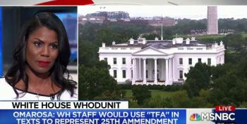 Omarosa: White House Staff Used Hashtag TFA In Texts As Code For 25th Amendment