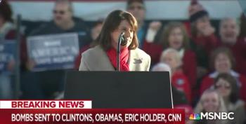 Leah Vukmir Beams As Rally Crowd Chants 'Lock Her Up' After MAGABomb Targets Hillary Clinton