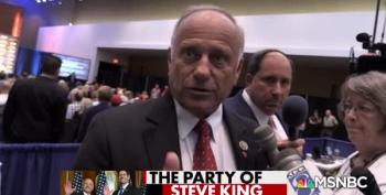 Steve King Wonders When Terms Like 'White Nationalist' Became Offensive?