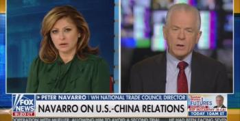 Peter Navarro Calls Criticisms Of His Crazy China Tariffs 'A False Narrative'