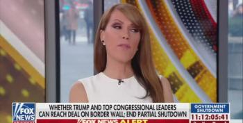Fox News' Host: If Mexico Already Paid For The Wall Why Did Trump Shut Down The Government?