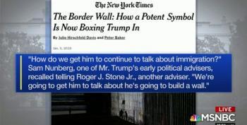 Trump's Advisors Invented Border Wall Idea To Keep Trump Focused On Slamming 'Illegal' Immigrants