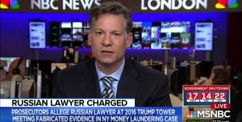 Russian Lawyer At Trump Tower Meeting Admits She Was A Kremlin Informant
