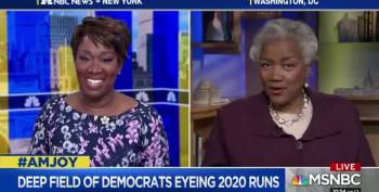 Donna Brazile: 'Take A Page From Hillary Clinton, And You Have A Recipe For Success'