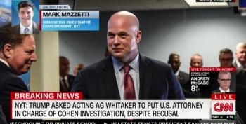 Report: Trump Asked Whitaker To Intervene In Active Investigations