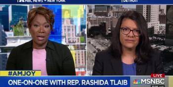 Rep. Tlaib Feels More Palestinian In The Halls Of Congress Than In Palestine