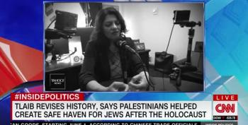 Rashida Tlaib's Holocaust Comments Raise False Controversy