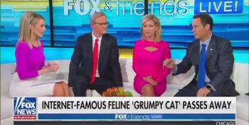 Fox & Friends Audience Howls With Laughter At The Death Of 'Grumpy Cat'
