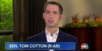 Sen. Tom Cotton Calls For Roe To Be Overturned
