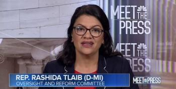 Rashida Tlaib: 'The Traditional Congressional Oversight Process Isn't Working.'