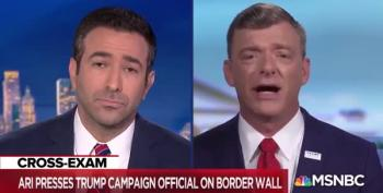 Marc Lotter Tries To Sell Ari Melber A 'Virtual Wall'