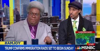AM Joy Guest: Trump's ICE Policy 'Anchoring People In Danger'