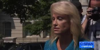 Conway Asks Reporter 'What's Your Ethnicity?'