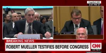 Wikileaks Statements Were 'Problematic,' Says Mueller