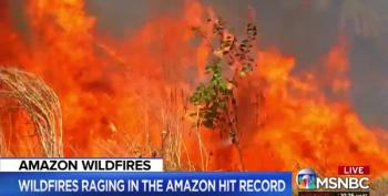 The Amazon Forest Is Ablaze, Endangering Clean Air And Water Everywhere