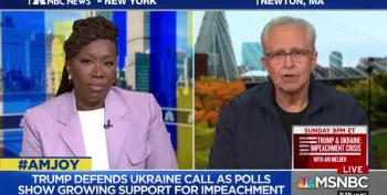 AM Joy Guest Calls Ukraine Evidence Against Trump 'Smoking Howitzer'