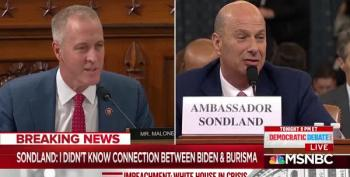 Rep. Maloney Gets Sondland To Admit Trump Wanted Investigations For Personal Benefit