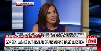 Conservative Hack Asks McSally The Same Question About Impeachment Witnesses