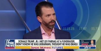 Donald Trump Jr. Accuses Amb. Yovanovitch Of Illegally 'Monitoring' Him
