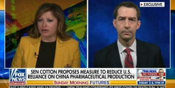 Tom Cotton Accuses China Of Pushing Conspiracy Theories After Doing It Himself