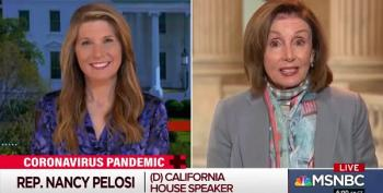 'Maybe I Should Have A Freezer Full Of Lysol,' Nancy Pelosi Retorts