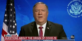Mike Pompeo: 'Enormous Evidence' Coronavirus Originated In Wuhan Lab